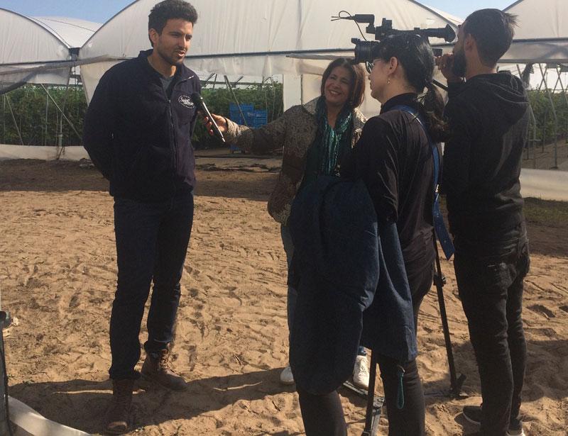 La production tunisienne de framboise, protagoniste à la télévision allemande