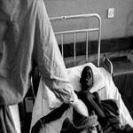 الكلاب تأكل ضحايا « الإيبولا »في ليبيريا