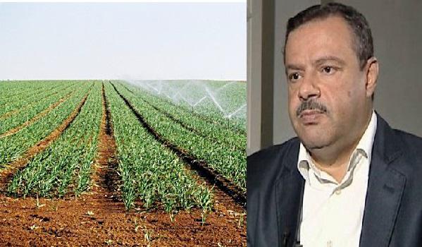 Selon Samir Bettaieb, 10.9% de croissance dans le secteur de l'agriculture