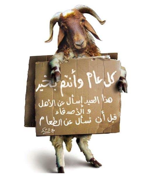 Voeux de l'Aïd el kebir  2010 - Aid El Kebir 2011 - Aid El Kebir 2012 Aid-251109-2