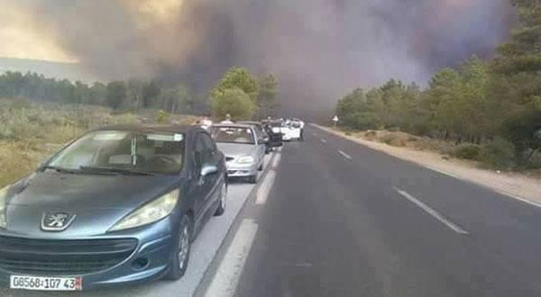وزير الداخلية الجزائري يتوعد المتسببين في حرائق الغابات
