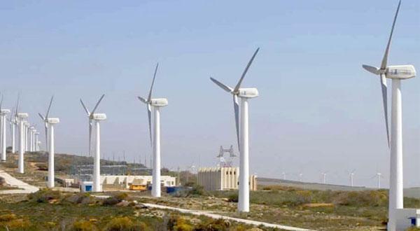 المؤسسات الالمانية مهتمة بسوق طاقة الرياح في تونس