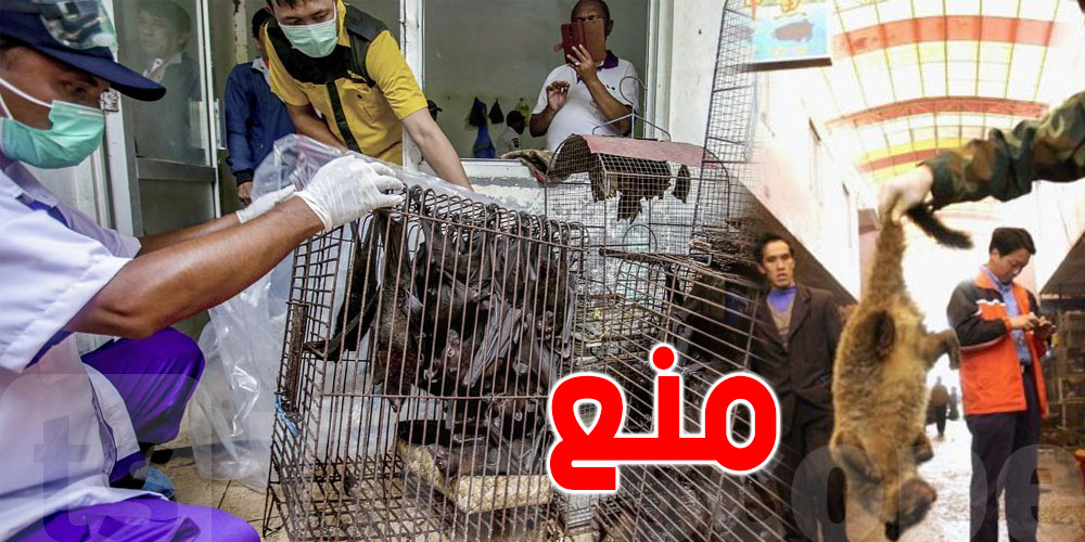 الصحة العالمية تدعو إلى إيقاف بيع الحيوانات البرية الحية في الأسواق