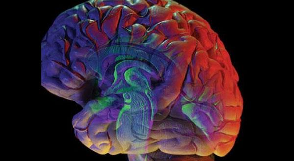 لأول مرة في التاريخ.. زرع جهاز في المخ يقوي الذاكرة