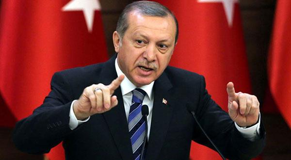 أردوغان : كل من يحاول زعزعة استقرار شعبنا سيدفع الثمن