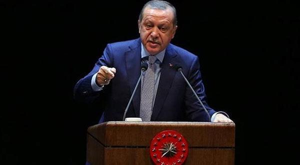 أردوغان: نحترم حدود الدول المجاورة رغم ثقلها على قلوبنا