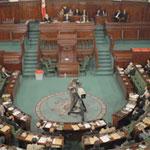 La mini constitution votée avec 141 voix pour et 37 contre