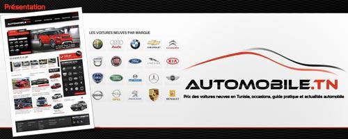 automobile-270611-1.jpg