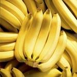 Saisie de 3250 litres de carburants et une importante quantité de bananes