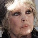 Brigitte Bardot à Mehdi Jomaa : L'image de la Tunisie est éclaboussée par cette  cruauté inhumaine gratuite