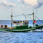إيقاف مركب صيد بالجر مصري في منطقة الصيد الخاصة شرق ميناء جرجيس