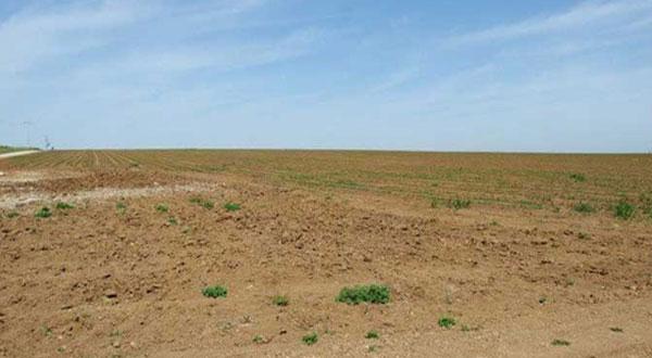 Béja : 55 projets prioritaires seront présentés à Chahed