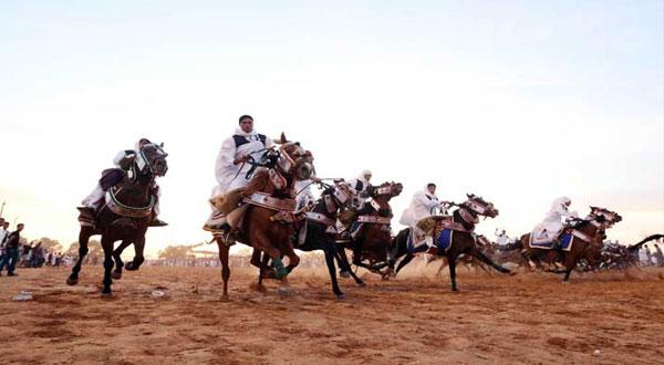 و زير الثقافة يُغادر مهرجان بوحجلة بسبب معركة بين فُرسان
