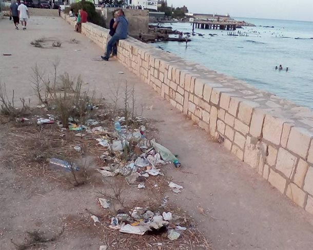 En photos- Carthage : Spectacle désolant de déchets qui s'y accumulent...