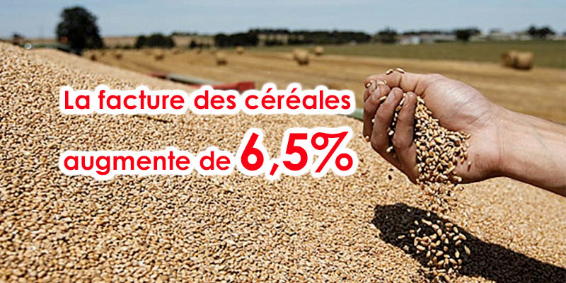 Malgré une récolte exceptionnelle, la facture des céréales augmente de 6,5%