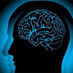 دراسة: عقل الإنسان أقل دقة وتركيزا في فصل الشتاء