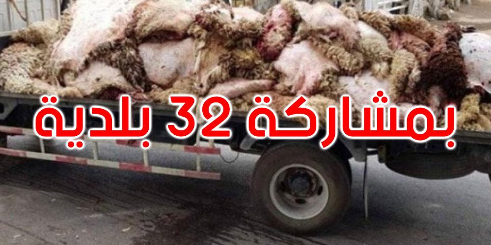 غدا: انطلاق الحملة الوطنية لتثمين جلود أضاحي العيد