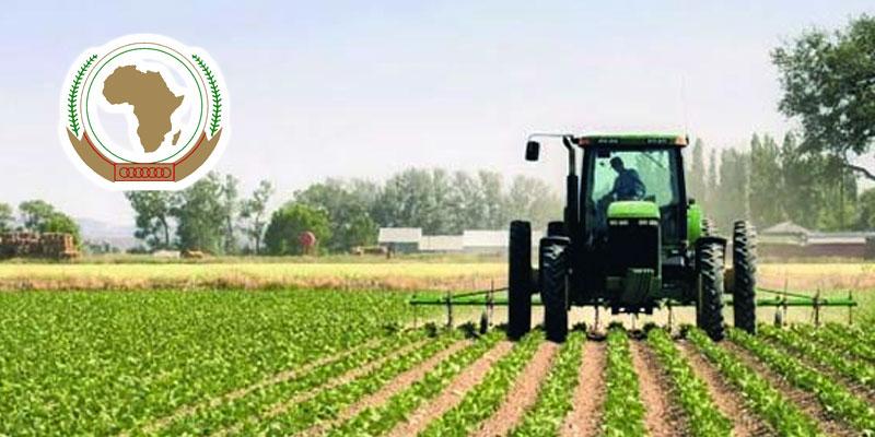 La Tunisie remporte le prix Déclaration de Malabo de l'agriculture pour 2020