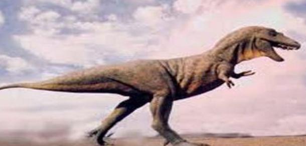 العثور على أثر لقدم ديناصور