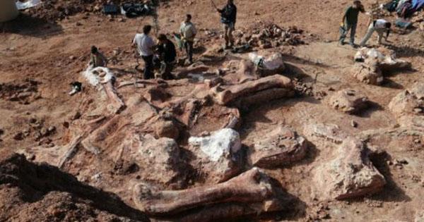 اكتشاف أكبر أثر لديناصور في العالم