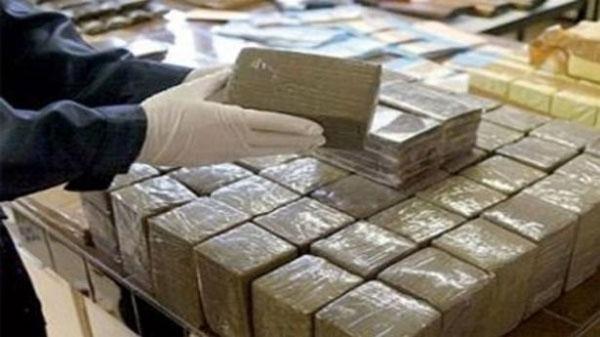 سوسة: حجز 100 غرام من الكوكايين وإيقاف 8 أشخاص من بينهم أجانب
