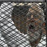 مصر: المؤبد لمرشد الاخوان في قضية مسجد الاستقامة