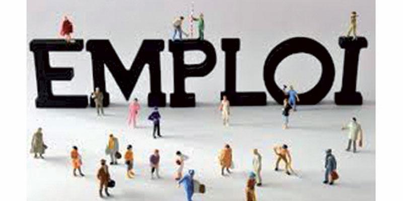 50 milles employés seront recrutés au secteur de la fonction publique