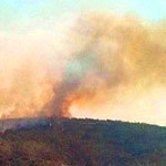 Le feu reprend à Ennahli après avoir été maîtrisé ce matin