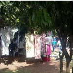 En photos : Un espace vert à Mégrine transformé en friperie