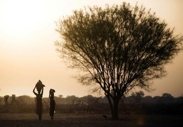 Soudan du Sud: la faim pousse les gens à manger des feuilles