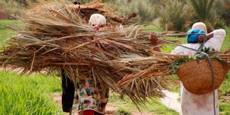84% des ouvrières agricoles utilisent des pesticides sans protection