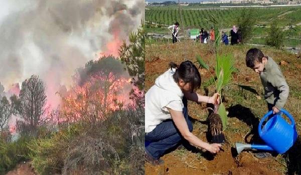 Lancement de la campagne nationale pour la reconstitution de la forêt tunisienne