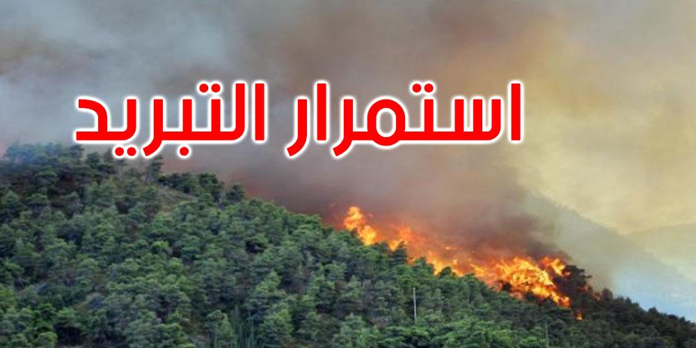 بنزرت: السيطرة نسبيا على حريق غابة سجنان واستمرار المراقبة والتبريد