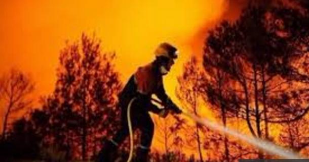 اندلاع حريق هائل بجبل السرج بالوسلاتية
