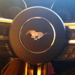 En photos : La légendaire Ford Mustang débarque en Tunisie