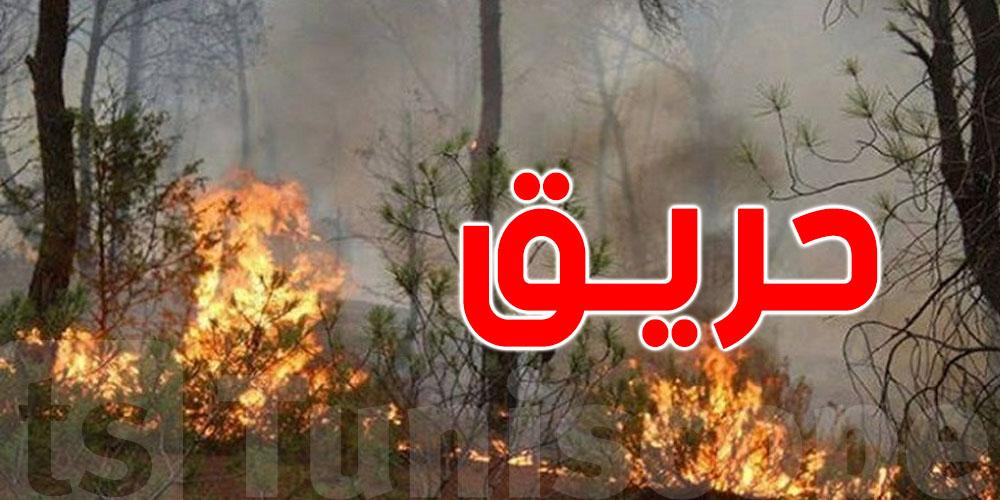فظيع: يحرق زوجته بدم بارد وينتظر تحوّلها إلى رماد