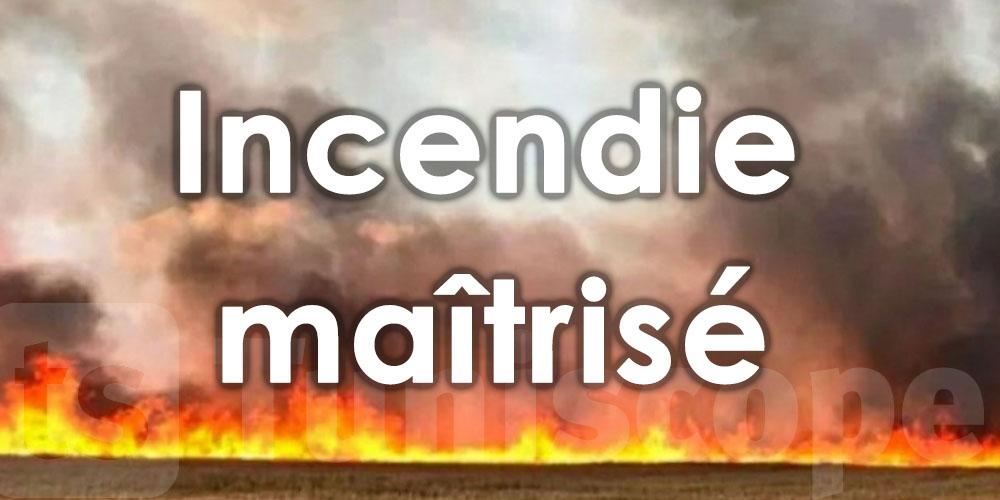 Incendie maîtrisé à Jebel Nadhour