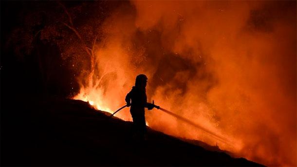 Incendies au Portugal : la ministre de l'Intérieur démissionne, après plus de 100 morts en quatre mois