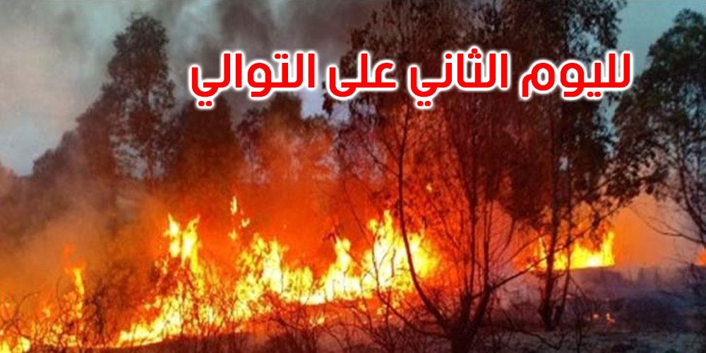 القصرين: تواصل حريق جبل تيوشة بالمنطقة العسكرية العازلة