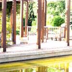 En Photos : Vol des poutres en bois du jardin japonais de Tunis