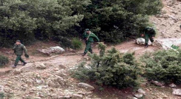الإفراج عن 6 حراس غابات تونسيين اعتقلتهم بالجزائر