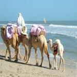 Les algériens soutiennent massivement le tourisme tunisien