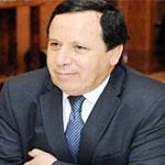 الجهيناوي يوضّح حقيقة انضمام تونس لتحالف إسلامي عسكري لمحاربة الإرهاب
