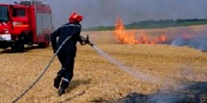 Il faut punir toute personne impliquée dans les incendies des champs de céréales, demande l'UTAP