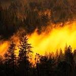 Urgent : Une Série d'explosions au milieu de l'incendie au Kef