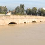 باجة:مياه وادي مجردة غمرت أكثر من 300 هكتارا من الأراضي الفلاحية