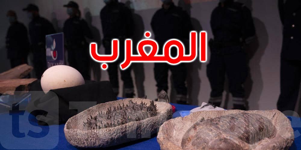 المغرب يتسلم آلاف القطع الأثرية المنهوبة من فرنسا