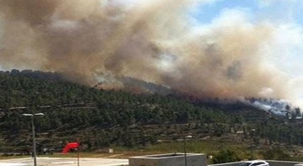 المكناسي : حريق بجبل وادي اللبن