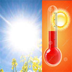 طقس يوم السبت: الحرارة بين 32 و42 درجة مع ظهور الشهلي