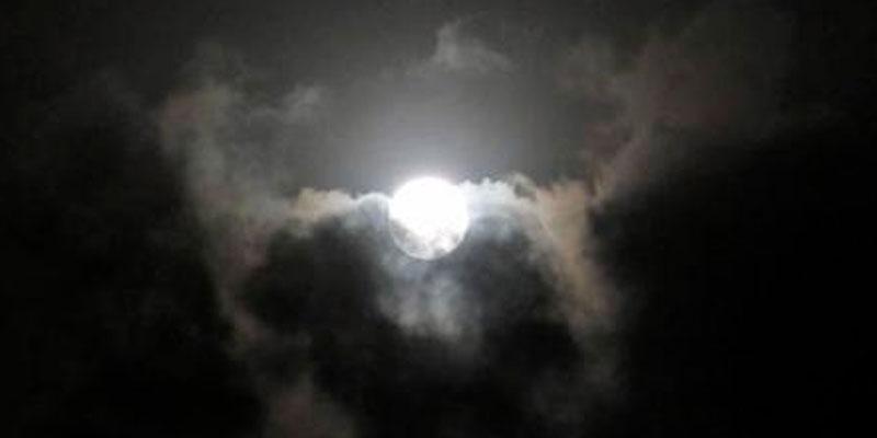 Températures comprises entre 12 et 16°C cette nuit